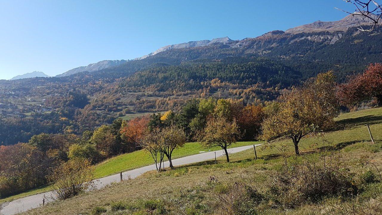 Terrain à bâtir à acheter canton du Valais | Suisse|||