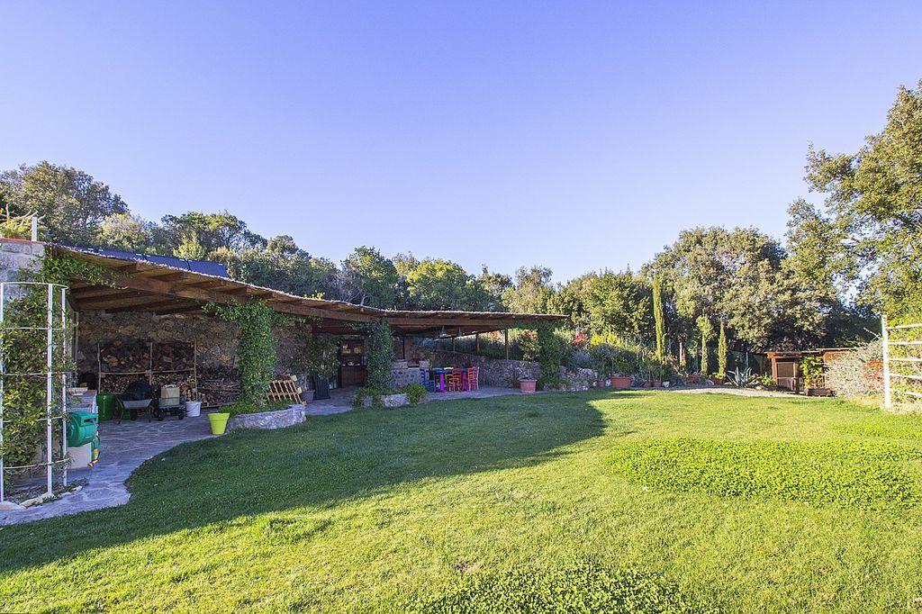 en oliveraie|La propriété comprend environ six hectares de terres divisées en garrigue