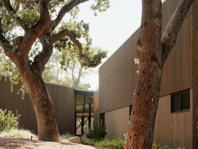 Dawnridge House by Field Architecture se divise en deux autour d'un chêne géant