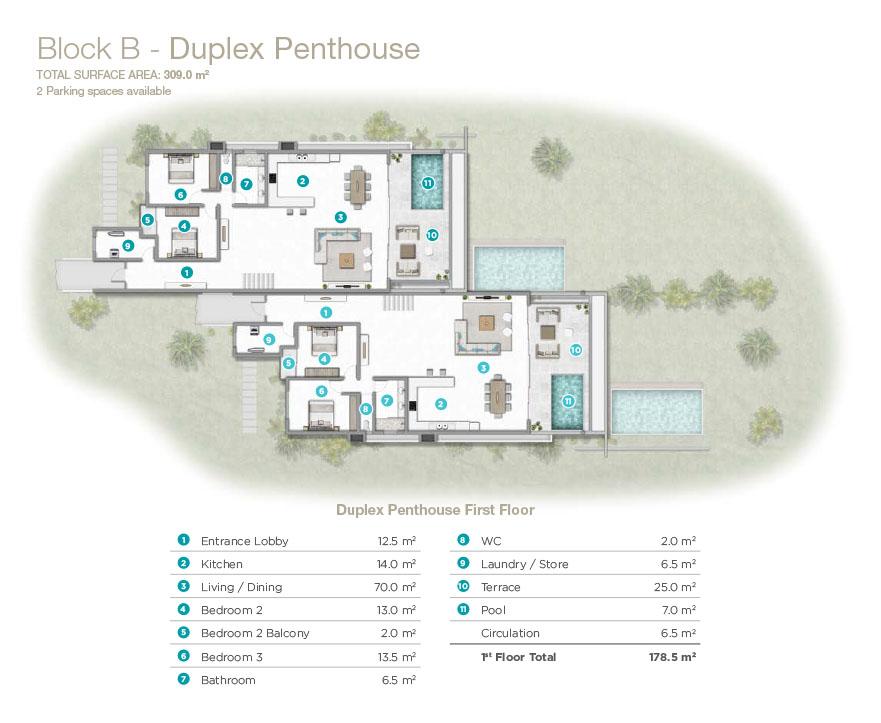 Penthouse duplex en vente