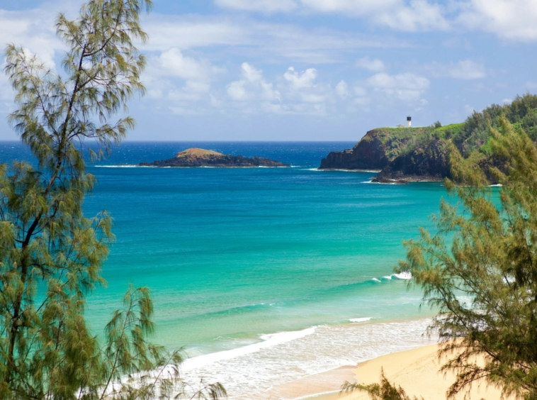 À vendre domaine vue spectaculaire sur l'océan Pacifique | Hawaï